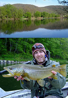 Delaware River Brown Trout