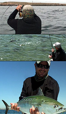 Fly Fishing Northeast Saltwater