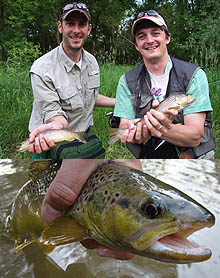 NY Trout Fly Fishing