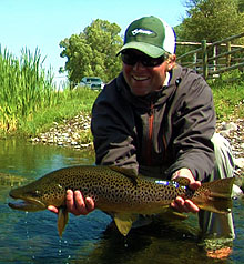 Montana Brown Trout