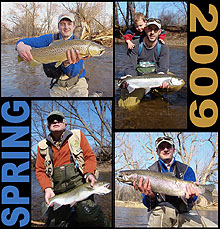 Lake Ontario Steelhead & Brown Trout