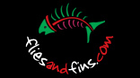Welcome to Flies & Fins Fly Fishing